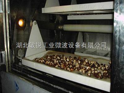 供应湖北微波香菇烘干设备