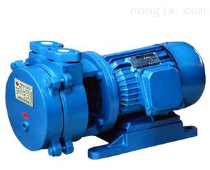 J-X型柱塞式计量泵 计量泵 泵 水泵厂家 计量水泵