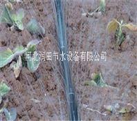 湖南喷灌带使用方法 辰溪县各种型号微喷带供应