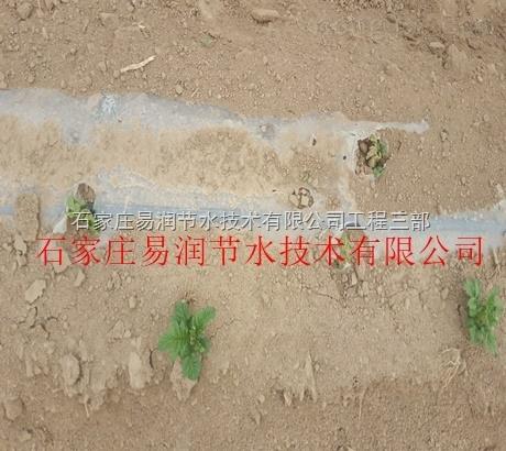 新绛县内镶滴灌带信誉保证 滴灌产品大全|低价出售