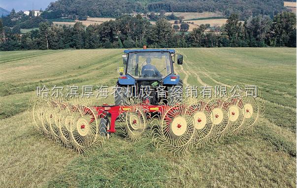 赛特利斯QR系列指盘式搂草机价格