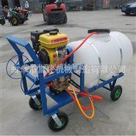厂家热销 担架式喷雾器价格  背负式喷雾器图片