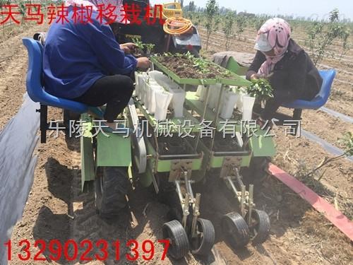 2ZQ-2-乐陵市天马机械设备有限公司专业生产各种多功能蔬菜移栽机