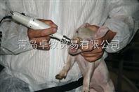 卓牧进口仔猪充电式电动磨牙器