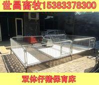养猪设备仔猪保育床生产厂家2.4*3.6小猪保育床