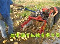 新款土豆出土机 收的干净的土豆收获机
