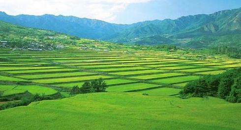 """聚焦京津冀 打造具有中国特色的""""农业硅谷"""""""