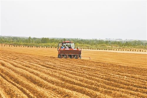 """但今年却出现了""""雨中晒粮""""的奇观,农民收获的粮食基本没有受到影响,这图片"""