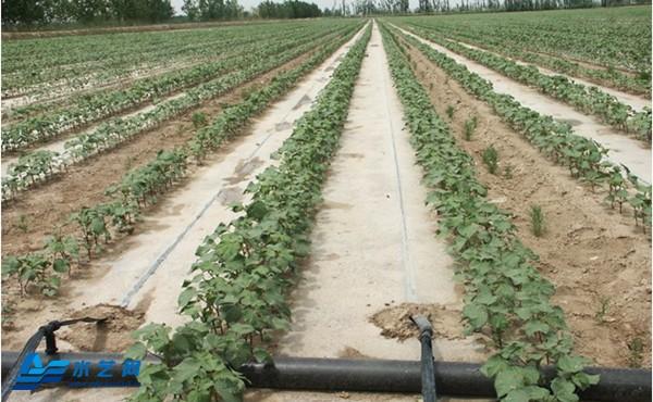 包头节水灌溉助力农业产业化发展
